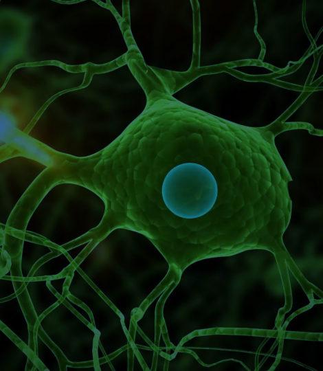 Neurociencia para resolver o estresse no trabalho app para eventos, blog para eventos