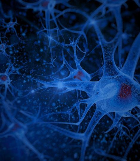 gestão de eventos, Neurociência, app para eventos, blog de eventos,InEvent